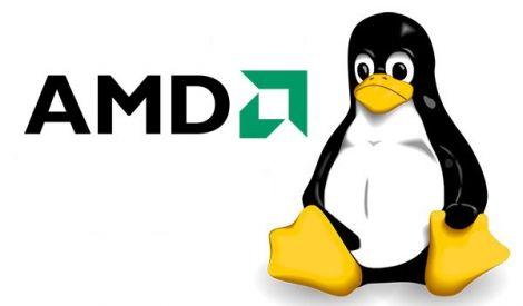 amd linux