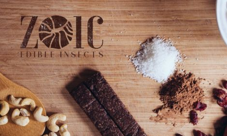 Zoic insect protein bar