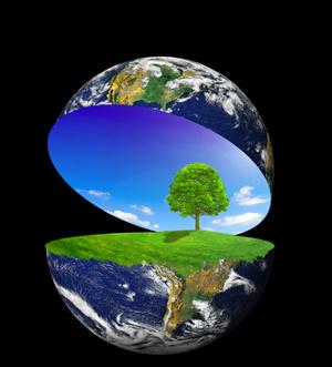 WWF Living Planet Report 2010 due pianeti