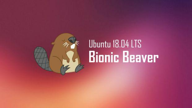 Ubuntu 18 04 Bionic Beaver 10 anni supporto