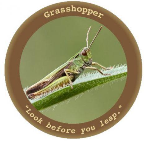 wikileaks grasshopper
