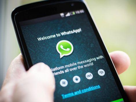 Whatsapp scam segreteia
