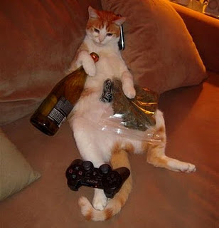 cat booze and videogames 047