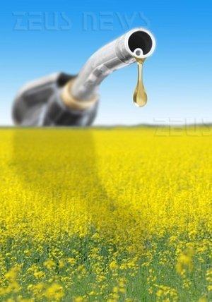 Enzimi etanolo Novozymes Genencor