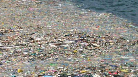 isola spazzatura