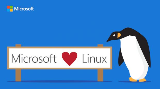 Microsoft Linux oin