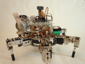 Prospero robot agricoltore pianta semi
