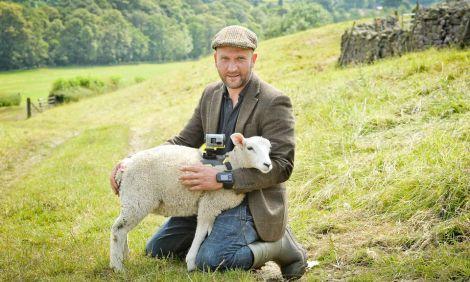 sheepcamhero