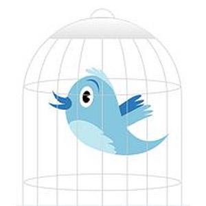 Twitter lavori forzati Cheng Jianping