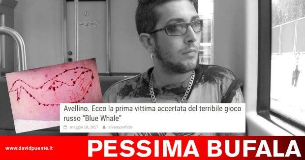 morto blue whale
