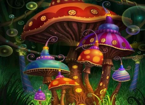 funghi allucinogeni depressione