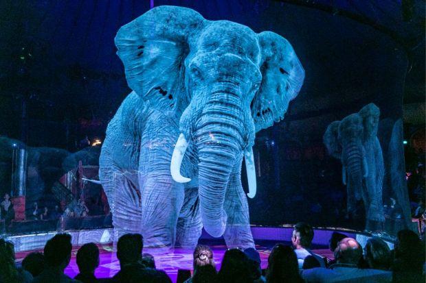 circo roncalli animali olografici