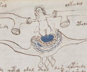 Voynich XV secolo