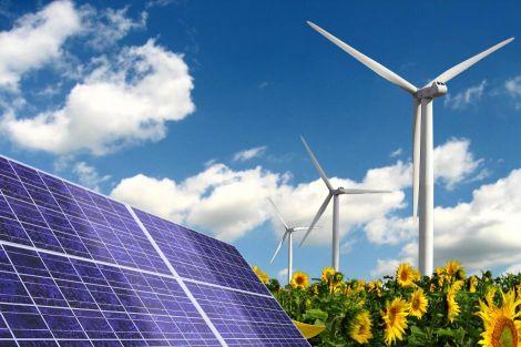 batteria rabarbaro rinnovabili