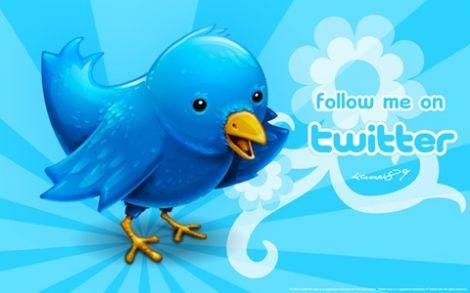 grillo follower twitter