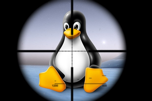Linux-vulnerabile