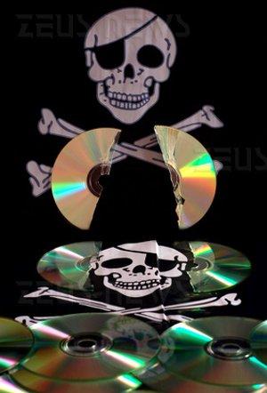 BSA 49% software pirata Italia