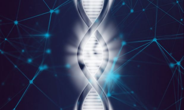 genoma excel