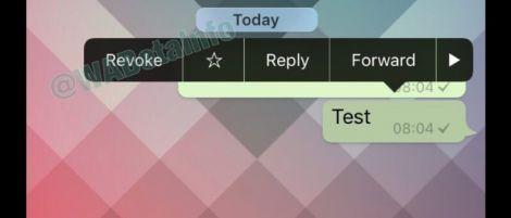 Whatsapp Revoke WABetainfo