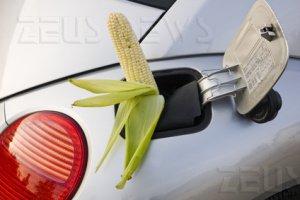 Biocarburanti fame Confederazione Agricoltori G14