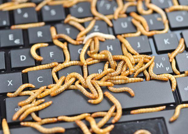 eternalblue computer worm wannacry patch