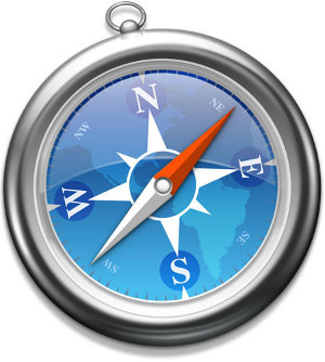 Safari 4.0.5 Windows falla critica