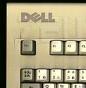 Logo Dell su tastiera