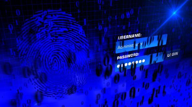 windows 10 bug password