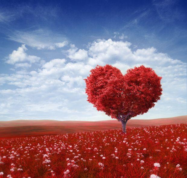 spam san valentino