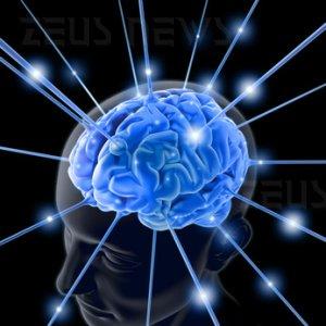 Scanner cerebrale memoria spaziale ippocampo