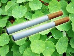 Sigaretta elettronica OMS