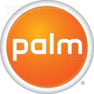 Le entrate di Palm calano del 24%