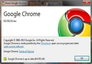 Google Chrome 8 PDF Flash Sandbox Adobe