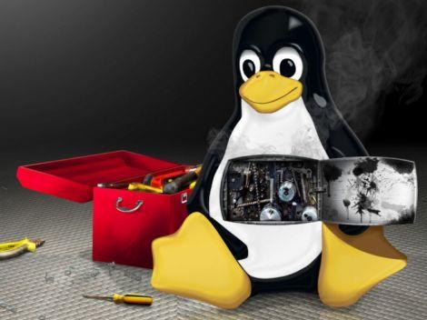 linux bug 9 anni