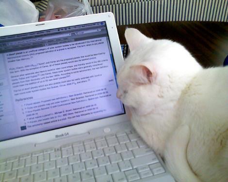 Wikipedia sciopero protesta ddl intercettazioni 29