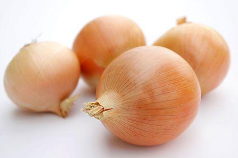 muscoli cipolle oro