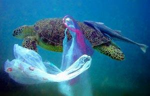 Petizione online sacchetti plastica bando 2011